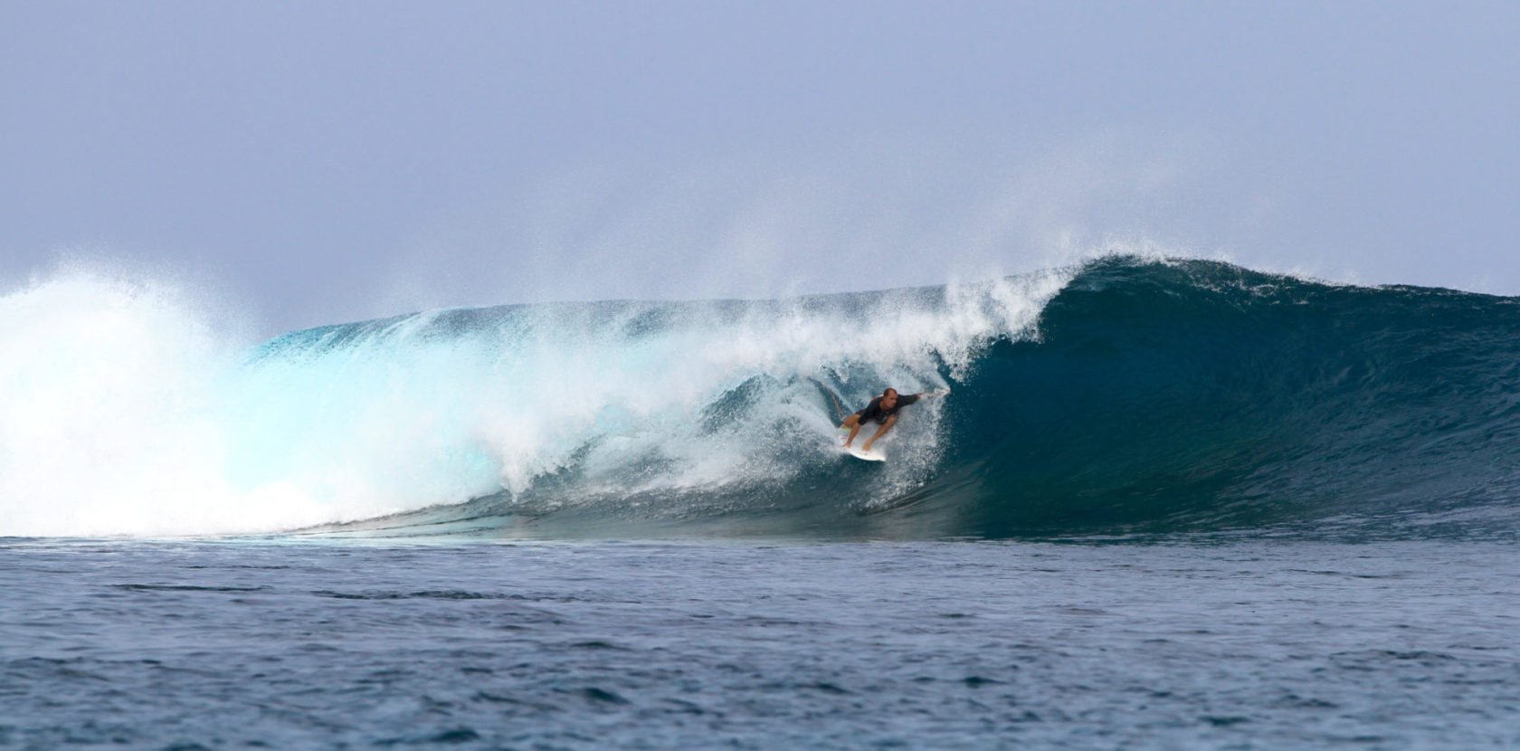 ANGELO BONOMELLI: MENTAWAI DREAM